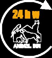24h w hotelu Animal Inn