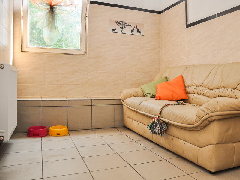 przykładowy pokój w hotelu dla zwierząt